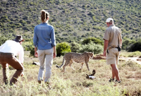 The Drostdy Hotel &  Mount Camdeboo Private Game Reserve